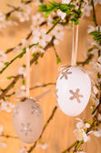 Easter decorative eggs — Stock Photo