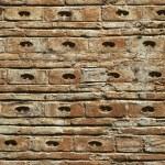 Eski tuğla duvar — Stock Photo