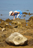 Child collecting the stones on the stone beach — Stock Photo
