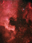 North America and Pelican Nebulae — Stock Photo