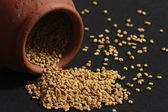 Fenugreek is used both as an herb (the leaves) and as a spice (th seeds). — Stock Photo