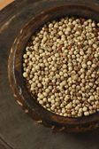White Pepper Corn — Stock Photo
