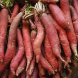 Постер, плакат: Sweet Potato A root used in cooking in Indian dishes