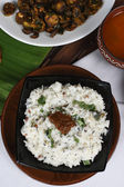 Curd Rice - A Rice mixed with yogurt and seasoning — Stock Photo