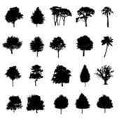 Set Of Twenty Black Vector Silhouettes Trees — Stock Vector