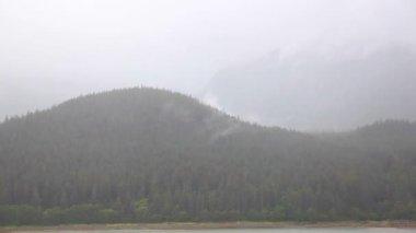 Rain on Alaskan coast. — Stockvideo