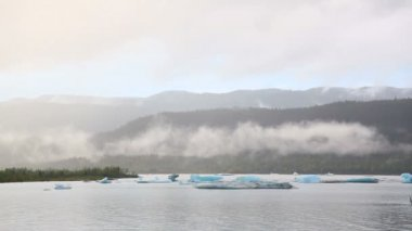 Chunks of glacier floating in water. — Stock Video