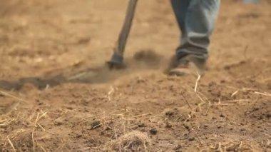Working dirt 1 — Stock Video
