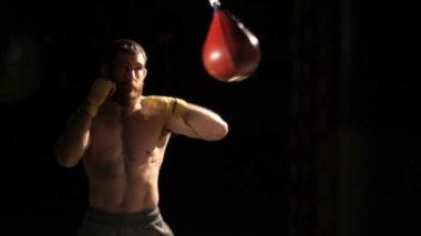 Boxer slow motion wide shot — ストックビデオ