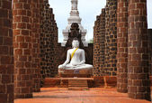 Bílé buddha — Stock fotografie