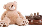 Big teddy bear — Stock Photo