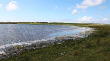 View by Harray Loch in Orkney, Scotland — Stock Video