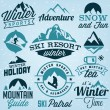 Collection of Winter Sports Badges and Labels. Vector Design Elements in Vintage Style — Vettoriale Stock