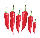 Red сhili pepper - Illustration — Stockvektor