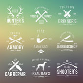 Vintage Labels With Retro Typography for Mens Hobbies Such as Hunting, Arms, Dog Breeding, Car Repair etc. on Abstract Background — Stock Vector