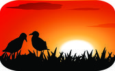 Chicks at sunset — Stock Vector