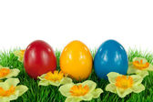 Easter eggs in a meadow — Stock Photo