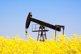 Rezavý olejové čerpadlo — Stock fotografie