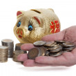 Stock Photo: Golden piggy bank