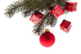 Red Christmas tree ball and red small packages on a fir twig — Stock fotografie
