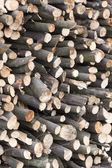 Wood sawn — Stock Photo