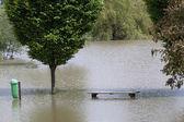 Flooded park — Stock Photo