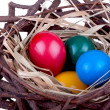 Easter eggs in bird nest — Stock Photo