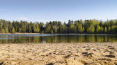 Natural landscape of the forest lake with a sandy beach — Stock Photo
