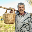 Senior farmer holding a fork and a straw basket — Stock Photo #40499261