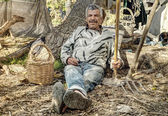 Senior farmer resting — Stockfoto