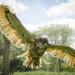 Stock Photo: Eagle Owl in flight