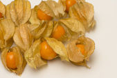 Physalis fruits isolated on a white background — Zdjęcie stockowe