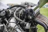Rolls Royce Merlin aero engine — Stock Photo
