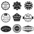 Vector Badges Set 2 — Stock Vector