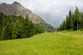 Green valley in the montains — Stock Photo