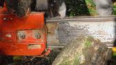 Cutting wood — Zdjęcie stockowe