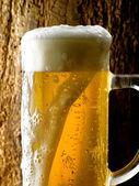 杯啤酒 — 图库照片