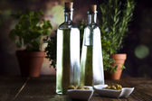 Collection of bottles of olive oil — Stock Photo