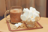 Cacao with marshmallow — Foto de Stock