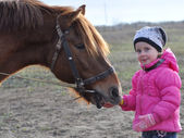Little girl feeding a horse — 图库照片