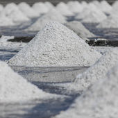 Piles of salt — Stock Photo