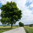 Stock Photo: Landscape of South Bohemia