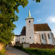 Stock Photo: Old church in South Bohemia