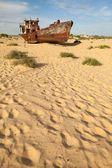 Lost Aral Sea — Stock Photo