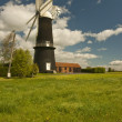 Постер, плакат: The Sibsey Trader Mill Sibsey England