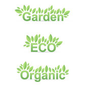 Garden ECO Organic sign with green leafs — Stok Vektör