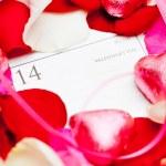Valentine's Day — Stock Photo #46475373