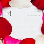 Valentine's Day — Stock Photo #46475395