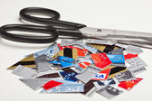 Credit Card Pieces — Photo