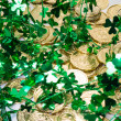 Gold Coins & Shamrocks — Stock Photo #46629649